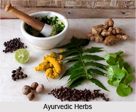 2_Ayurvedic_Herbs